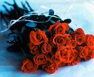 red-rose-bouquet.JPG